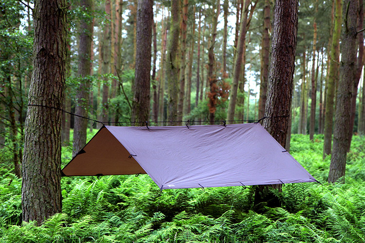 dd-woodland-tarp-for-forest-schools