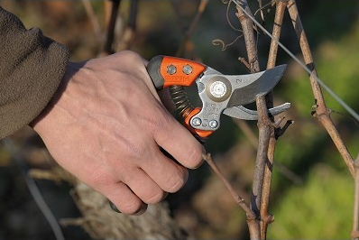 forest-schools-bahco-ergo-woodland-secateurs